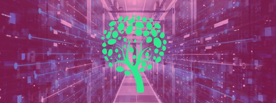 Serveurs d'un hébergement web écologique